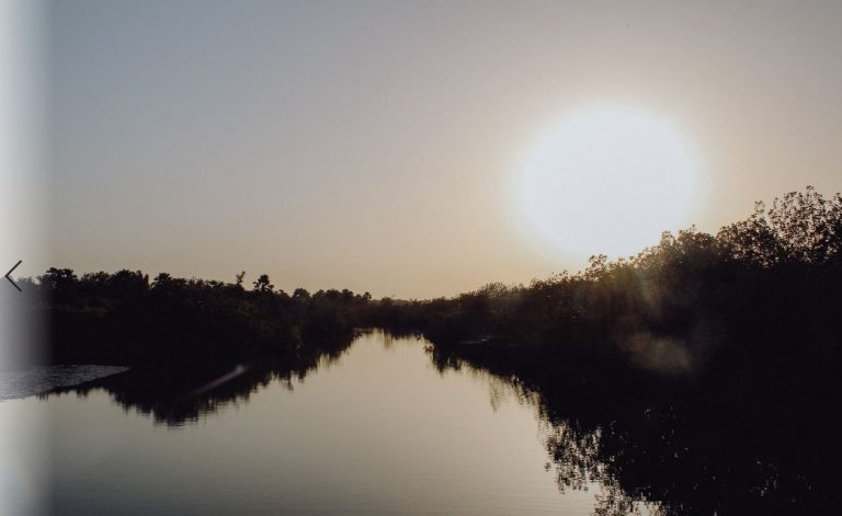 sunset-mangrove-gambia