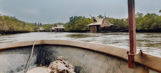 Bootje varen boottochtje mangrove gambia